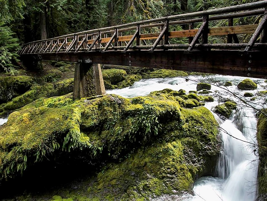 Bagby Hot Springs - Hike It Baby : Trails