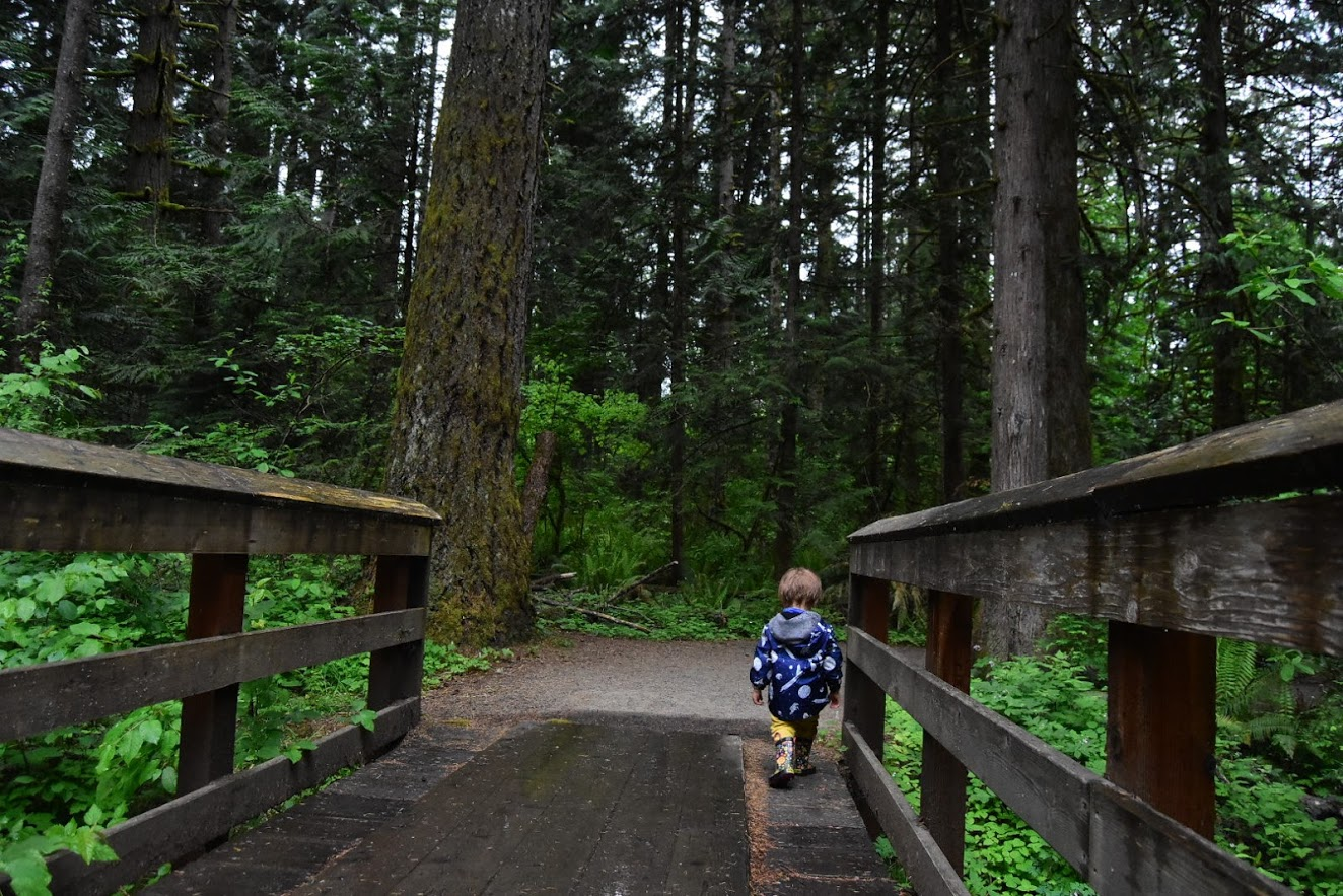 Tickle Creek Trail - Hike It Baby : Trails
